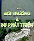 Việt Nam môi trường và cuộc sống - Phần 17