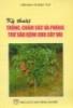 Kỹ thuật trồng, chăm sóc và phòng sâu bệnh cho cây vải