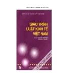 Giáo trình luật kinh tế Việt Nam