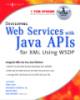 Developing Web Services with Java APIs for XML Using WSDP