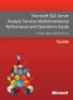Microsoft SQL Server Analysis Services Multidimensional Performance and Operations Guide