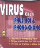 Virus cách phục hồi và phòng chống