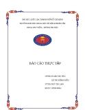 Báo cáo thực tập tốt nghiệp Thư viện trường đại học Sư Phạm Kỹ Thuật Thành Phố Hồ Chí Minh