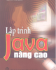 Ebook Lập trình Java nâng cao