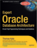 Expert Oracle Database Architecture9i and 10g Programming Techniques and Solutions