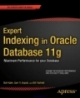 Expert Indexing in Oracle Database 11g maximum performance for your Database