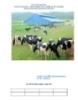 Thức ăn gia súc đang là một vấn đề nan giải cho ngành chăn nuôi ở nước t1