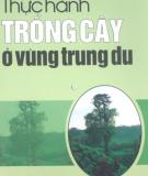 Thực hành trồng cây ở vùng trung du - Nguyễn Văn Tó, Chu Thị Thơm