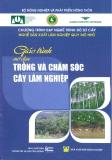 Giáo trình Trồng và chăm sóc cây lâm nghiệp - Nxb. Nông nghiệp