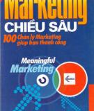 Ebook Marketing chiều sâu - 100 chân lý Marketing giúp bạn thành công - Nxb. Lao động - Xã hội