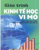 Giáo trình Kinh tế học vi mô - PGS.TS Phạm Văn Minh