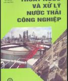 Ebook Thoát nước và xử lý nước thải công nghiệp - GS.TS. Trần Hiếu Nhuệ