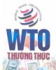 Ebook WTO thường thức - PGS.TS. Bùi Tất Thắng