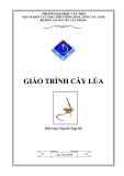 Giáo trình Cây lúa - Nguyễn Ngọc Đệ