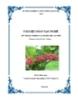 Tài liệu đào tạo nghề Kỹ thuật trồng và chăm sóc cà phê: Phần I - Sở NN&PTNT Quảng Trị