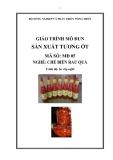Giáo trình Sản xuất tương ớt - MĐ05: Chế biến rau quả