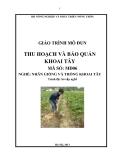 Giáo trình Thu hoạch và bảo quản khoai tây - MĐ06: Nhân giống và trồng khoai tây