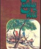 Ebook Thủy hử (Tập 2: Phần 1) - Thi Nại Am