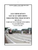 Giáo trình Sản xuất miến dong theo phương pháp ép đùn - MĐ02: Sản xuất tinh bột dong riềng và làm miến dong