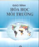 Giáo trình Hóa học môi trường - PGS.TS. Đặng Đinh Bạch (chủ biên)