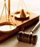 Bình luận khoa học bộ luật hình sự: Tập 8 - Đinh Văn Quế