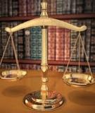 Bình luận khoa học bộ luật hình sự: Tập 10 - Đinh Văn Quế