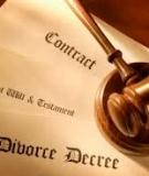 Bình luận khoa học bộ luật hình sự: Tập 4 - Đinh Văn Quế