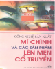 Ebook Công nghệ sản xuất mì chính và các sản phẩm lên men cổ truyền: Phần 2 - PGS.TS. Nguyễn Thị Hiền