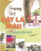 Ebook Trang trí cây lá màu trong nội thất - Mai Tuệ Mẫn, Trương Lỗ Quy