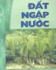 Giáo trình Đất ngập nước /Lê Văn Khoa (chủ biên), Nguyễn Cử, Trần Thiện Cường, Nguyễn Xuân Huân.