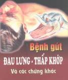 Ebook Bệnh gút - đau lưng - thấp khớp & cách chứng khác - GS.TS. Thỉ Số Đạo Minh