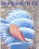 Ebook Linh quang trí tuệ - Kha Vân Lộ