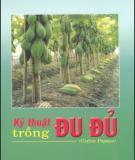 Ebook Kỹ thuật trồng đu đủ - NXB Nông nghiệp