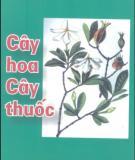 Ebook Cây hoa cây thuốc: Phần 1 - NXB Y học