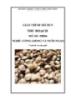 Giáo trình Thu hoạch - MĐ06: Ương giống và nuôi ngao
