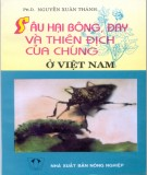 Ebook Sâu hại bông, đay và thiên địch của chúng ở Việt Nam: Phần 1 - Nguyễn Xuân Thành