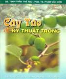 Ebook Cây táo và kỹ thuật trồng: Phần 1 - GS. TSKH. Trần Thế Tục, PGS. TS. Phạm Văn Côn