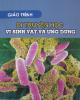 Giáo trình Di truyền học: Vi sinh vật và ứng dụng - Hoàng Trọng Phán (chủ biên)