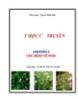 Y học cổ truyền - Chương 5: Các bệnh về phổi - Nguyễn Khắc Bảo