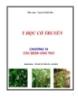 Y học cổ truyền - Chương 10: Các bệnh ung thư - Nguyễn Khắc Bảo