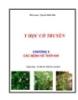Y học cổ truyền - Chương 9: Các bệnh về thời tiết - Nguyễn Khắc Bảo