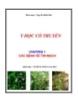 Y học cổ truyền - Chương 1: Các bệnh về tim mạch - Nguyễn Khắc Bảo