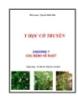 Y học cổ truyền - Chương 7: Các bệnh về ruột - Nguyễn Khắc Thái Bảo