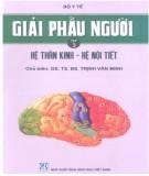 Ebook Giải phẫu người (Tập 3): Phần 1 – GS.TS.BS. Trịnh Văn Minh