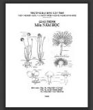 Giáo trình môn Nấm học: Phần 1 - PGS.TS. Nguyễn Văn Bá (biên soạn) (ĐH Cần Thơ)