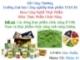 Báo cáo đề tài: Các dòng thực phẩm chức năng ở Việt Nam và thực phẩm chức năng sinh lượng - ĐH CNTP TP. HCM
