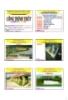 Bài giảng Công trình thủy: Chương 5 - PGS. Nguyễn Thống
