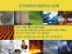 Bài giảng Sức khỏe môi trường: Chương 7 - ThS. Trần Thị Tuyết Hạnh