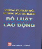 Ebook Những văn bản mới hướng dẫn thi hành Bộ Luật lao động - LG. Đào Thanh Hải