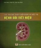 Ebook Các phương pháp chẩn đoán và điều trị bệnh sỏi tiết niệu: Phần 1
